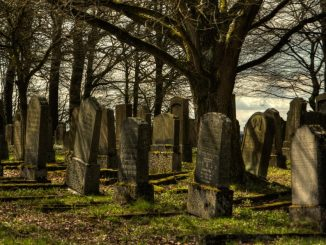 https://www.peakpx.com/632036/cemetery-jewish-cemetery-silent-tombstone-cemetery
